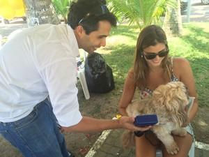 Ação implantou chips para identificar animais em caso de perda (Foto: Carolina Sanches / G1)