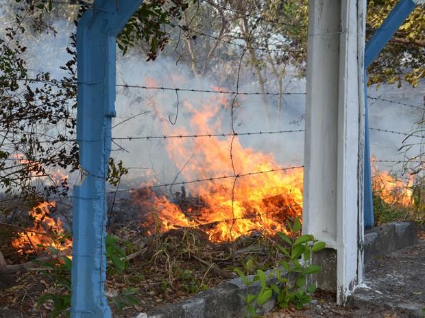 O sargento afirmou ainda que a causa do fogo é desconhecida, mas segundo ele um cigarro ou até mesmo pedaços de vidro podem iniciar um incêndio. (Foto: Walter Paparazzo/G1)