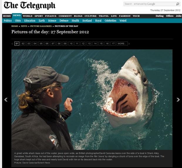 Fotógrafo David Caravias quase foi atacado ao tentar recriar cena do filme 'Tubarão'. (Foto: Reprodução/Daily Telegraph)