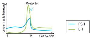 Gráfico A (Foto: Reprodução/UERJ)