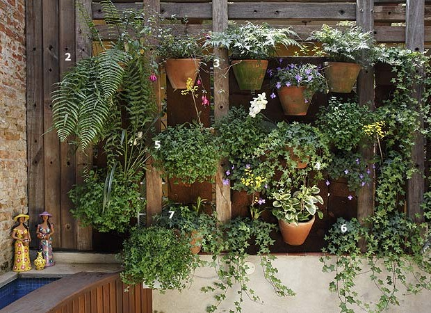 Plantas as top 50 casa e jardim jardim for Jardin vertical barato