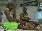 Seca obriga agricultores da BA a abandonar o cultivo da mandioca