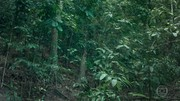'Zorra' apresenta 'Ninguém escapa do Amigo Oculto'