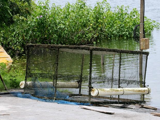 Modelo da gaiola de psicultura que faz parte do projeto pago pela Prefeitura de Quixadá (Foto: Juliana Vasquez/Agência Diário)