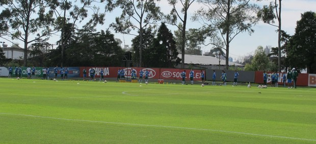 Palmeiras treino (Foto: Gustavo Serbonchini)