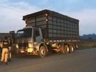 PRF apreende madeira e carvão vegetal nas rodovias federais do Pará