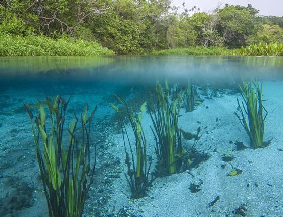 Quanto vale preservar a água limpa de Bonito