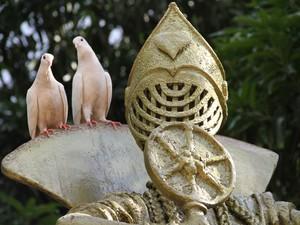 Pombos descansam sobre estátua na Prainha (Foto: Vianey Bentes/TV Globo)