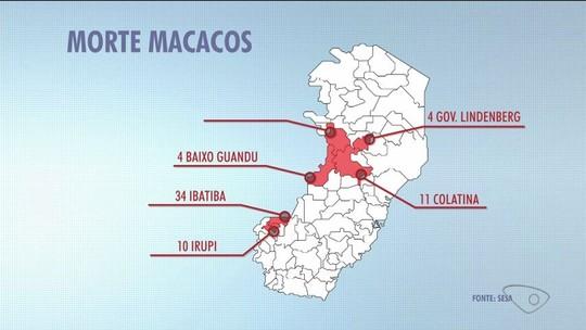 ES anuncia vacina contra febre amarela para 23 cidades