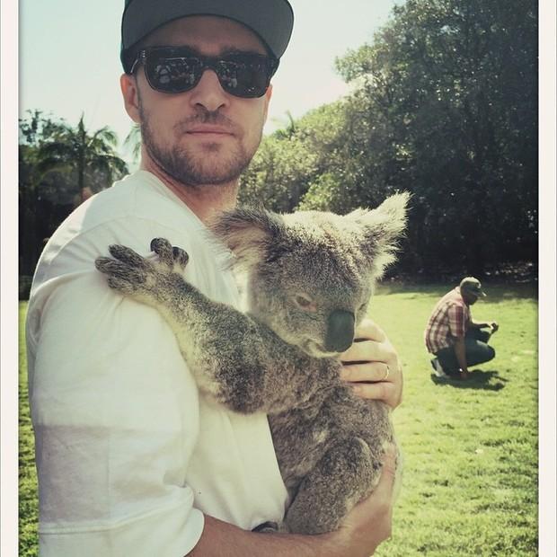 Justin Timberlake posa com coala na Austrália (Foto: Instagram/ Reprodução)