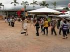 Festival agrícola Furusato Matsuri começa neste sábado em Mogi