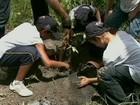 Universidade desenvolve ações de reflorestamento com alunos em AL