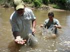 Grupo de pescadores esportivos de São Carlos fará soltura de 4 mil peixes
