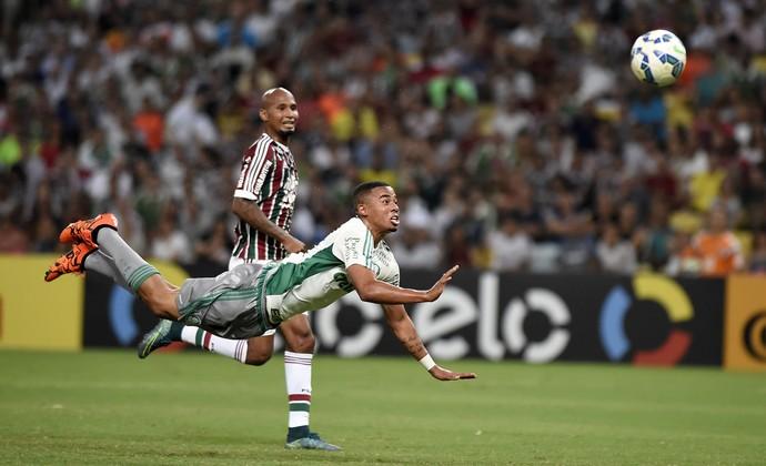 Fluminense x Palmeiras, Maracanã. (Foto: andré durão)