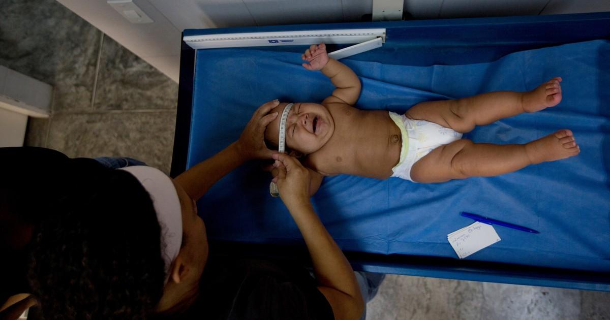 Zika circula em 41 países e territórios; Guillain-Barré aumentou em oito