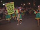 Bloco 'Melhor idade' arrasta foliões pelas ruas de Marliéria, MG