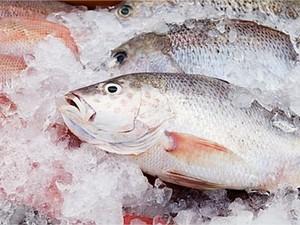 Peixe está mais caro (Foto: Divulgação/Prefeitura de Campos)