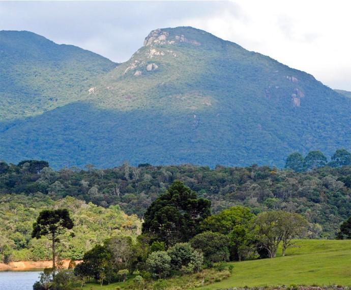 Aproveite as trilhas do Morro do Canal, no Parque Estadual do Marumbí (Foto: Divulgação Prefeitura de Piraquara/ Bruno Oliveira)