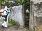 Prefeitura aplica inseticida após caso de dengue em bairro de Porto Alegre