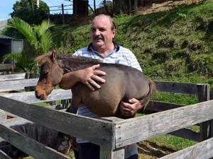 Seu Oliveira e o mini pônei, com cerca de 55 cm (Foto: Samantha Silva / G1)
