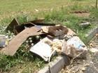 Agentes vistoriam casas e terrenos contra Aedes aegypti em Tietê