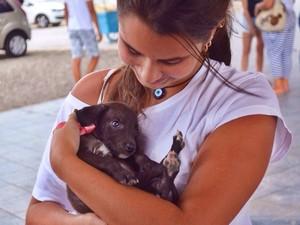Arca atende hoje cerca de 15 animais e conta com aproximadamente 50 voluntários  (Foto: Divulgação/ ArcaBV)