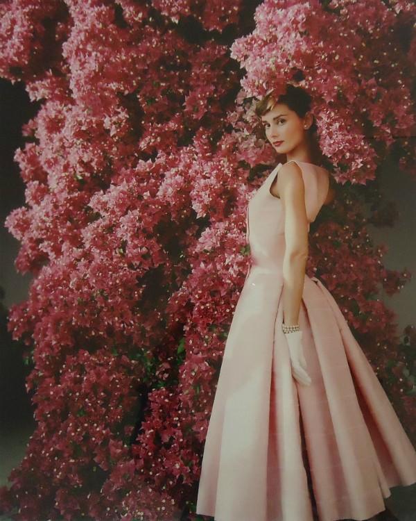 Retrato de Audrey Hepburn clicado em 1955 por Norman Parkinson (Foto: Divulgação)