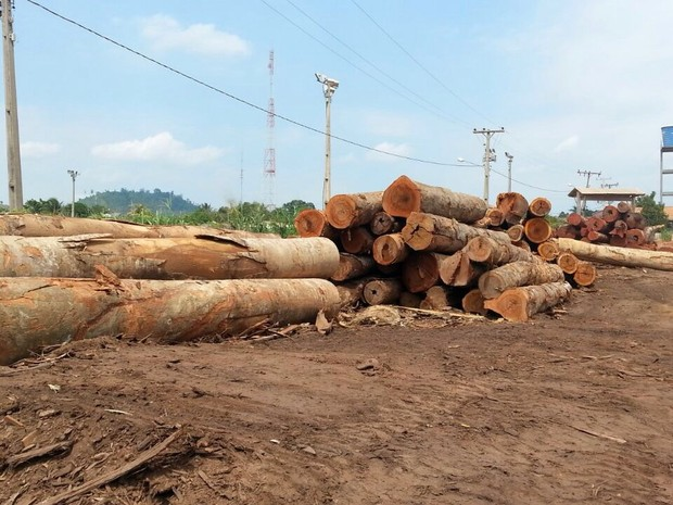 Serrarias funcionavam ilegalmente no nordeste do Pará. (Foto: Divulgação/ Semas)