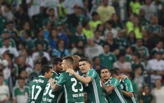 Palmeiras torcida (Foto: César Greco / Ag. Palmeiras / Divulgação)