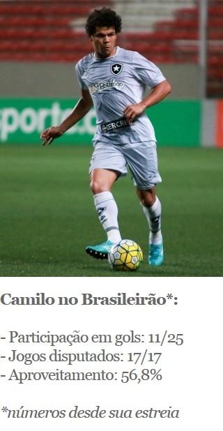 Camilo, Botafogo (Foto: Arte Esporte)