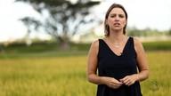 Gisele Loeblein comenta o início da colheita de arroz