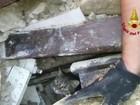 Gato é resgatado de escombros 16 dias após terremoto na Itália