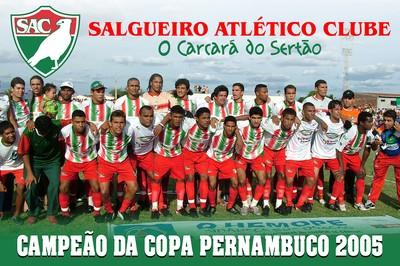 Salgueiro, pôster (Foto: Site oficial do Salgueiro )