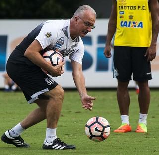 Dorival Júnior Santos (Foto: Ivan Storti / Divulgação Santos FC)