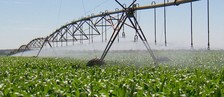 Grupo cria aplicativo para auxiliar nas plantações (Reprodução/TV TEM)