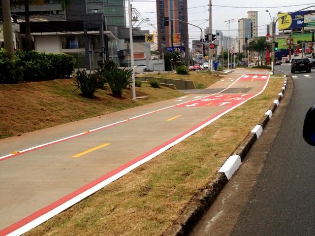 Trecho da ciclovia na Avenida Norte Sul, em Campinas (Foto: Jaqueline Zanovelli)