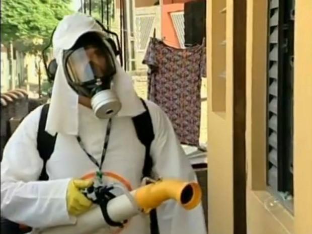 A nebulização protege a área por alguns dias. Se não houver eliminação dos possíveis criadouros, os insetos voltam a circular. (Foto: Reprodução TV Tem)