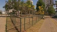 Moradores reclamam dos 'parques para cães' em Águas Claras
