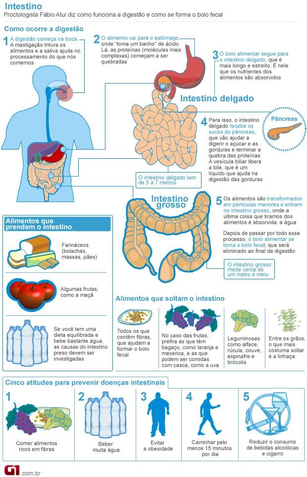 Fibras e água são essenciais para uma boa digestão; veja  mais dicas