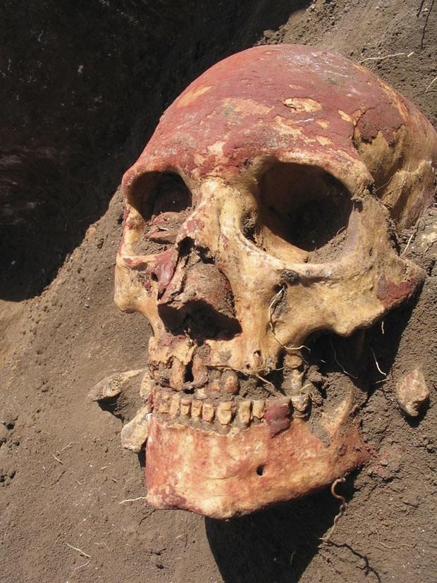 Foto mostra crânio humano da cultura Yamnaa, da Ásia Central, uma das culturas que carregaram as mais antigas cepas da praga  (Foto: Simon Rasmussen/Cell 2015 via AP)