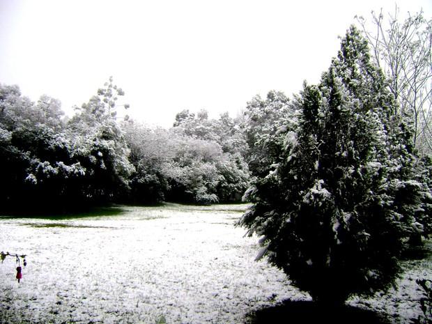 Neve em Caxias do Sul 2  (Foto: Berenice Pedroso de Moraes/VC no G1)