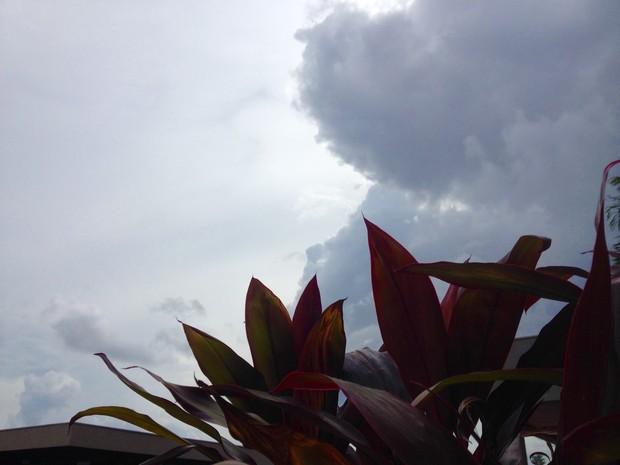 Céu de Campo Grande na tarde desta terça-feira (29) (Foto: Maria Caroline Palieraqui/G1 MS)