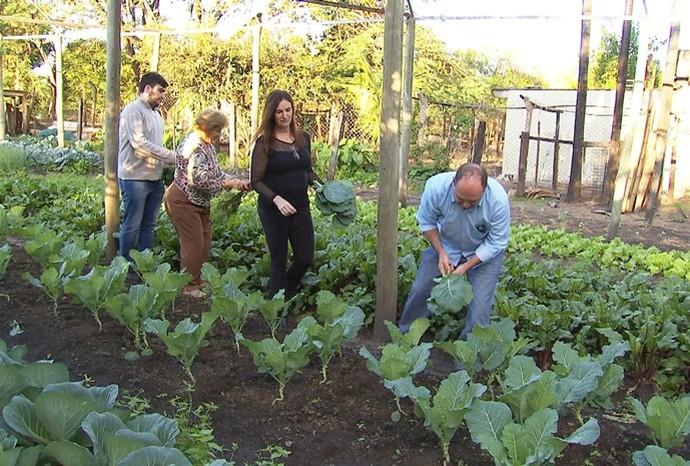 A família toda se envolve no trabalho: da plantação à venda dos alimentos (Foto: Reprodução/TV TEM)