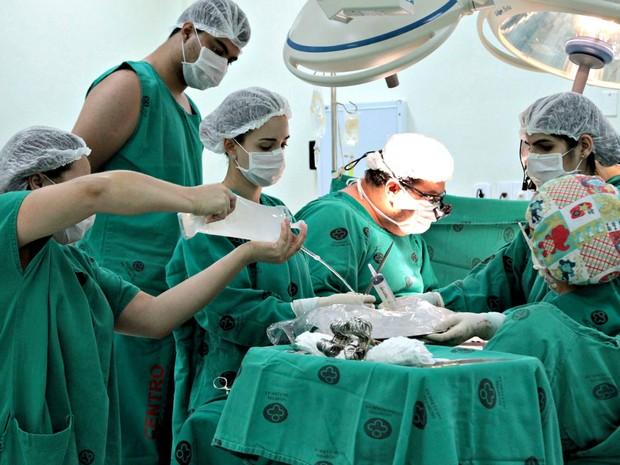 Doador único salvou vida de cinco pessoas que aguardavam por órgãos em fila de espera (Foto: Angela Peres/Secom)