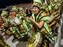 Saiba como foram os 2 dias de desfiles das escolas de SP (Flavio Moraes/ G1)