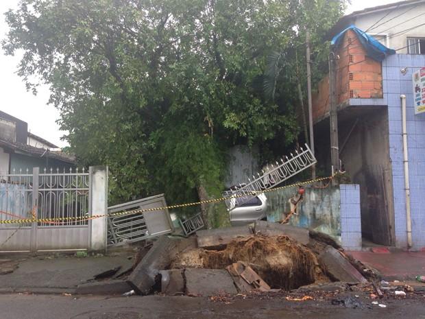 Árvore atingiu a fiação elétrica e uma casa na rua Bezerra de Menezes (Foto: Marcela Pierotti/TV Tribuna)