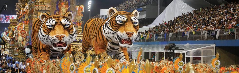 Não faltaram os tigres símbolos da Império de Casa Verde no desfile campeão (Foto: Andre Penner/AP)
