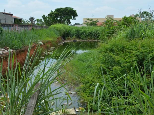 Terreno ao lado do lote apelidade de lagoa da dengue é abrigo de usuários de drogas e acumula lixo (Foto: Ísis Capistrano/ G1)