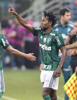 Zé Roberto Palmeiras (Foto: Marcos Ribolli)