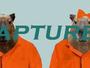 Capivaras fugitivas de zoo são recapturadas e devolvidas no Canadá